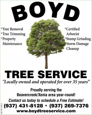 Certified Arborist - Stump Grinding - Strom Damage