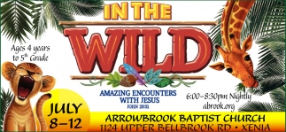 In The Wild - Amazing Encounters With Jesus