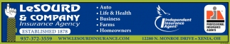 Auto - Life & Health - Business
