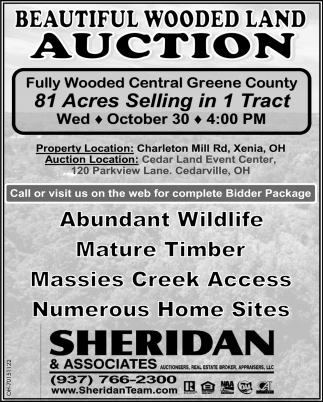 Beautiful Wooded Land Auction - October 30